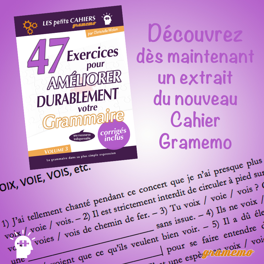 Annonce extrait cahier d'exercices Gramemo