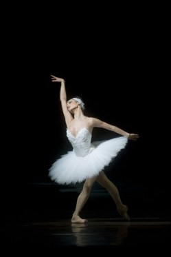 Jurgita Dronina as Odette - photo by Carl Thorborg-Royal Swedish Opera