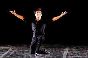 Black-Swan-Joaquin-de-Luz