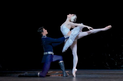 Thiago Soares as Siegfried and Marianela Nuñez as Odette - ©ROH, Alice Pennefather, 2012