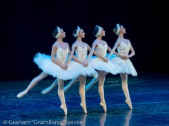 Flavia Stocchi, Giorgia Calenda, Susanna Salvi and Flavia Morgante as the four cygnets, Swan Lake 2014