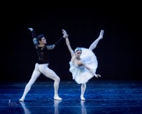 Marianela Nuñez and Thiago Soares in Swan Lake by Jack Devant