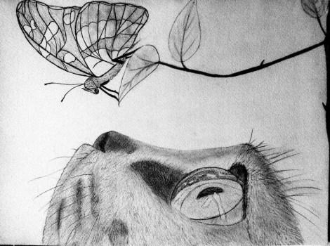 Herman's drawings 2
