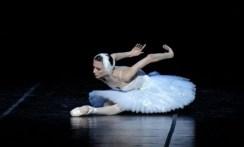 The Dying Swan with Svetlana Zakharova - photo Pierluigi Abbondanza