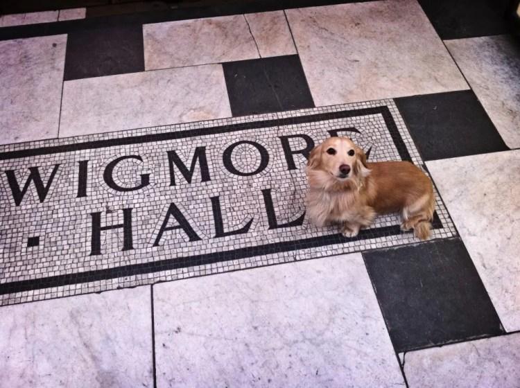 Tristan at the Wigmore