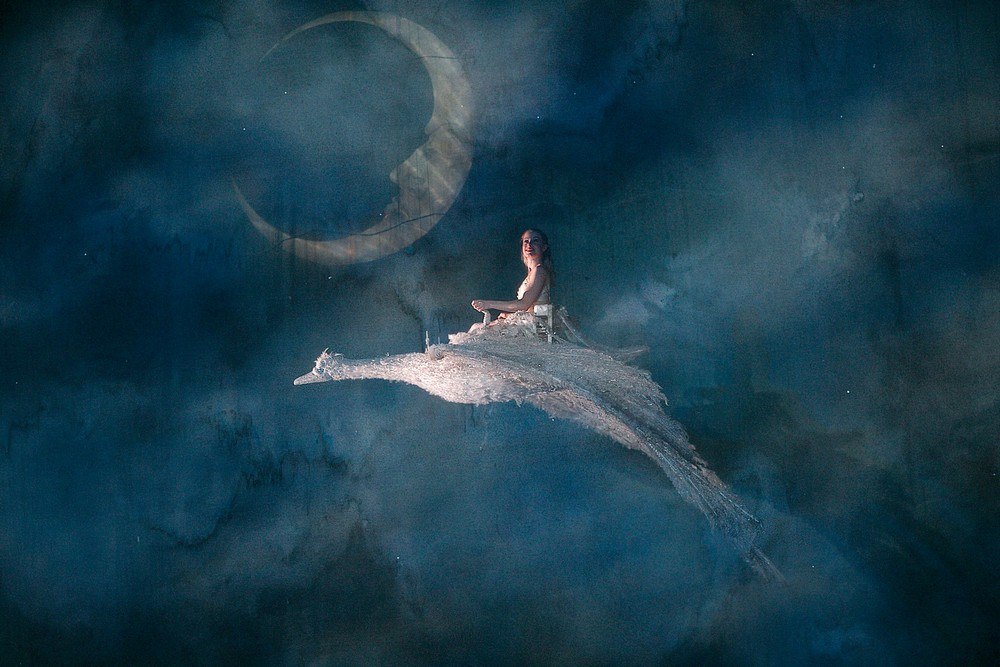 The Nutcracker, Birmingham Royal Ballet, photos by Dasa Wharton 06