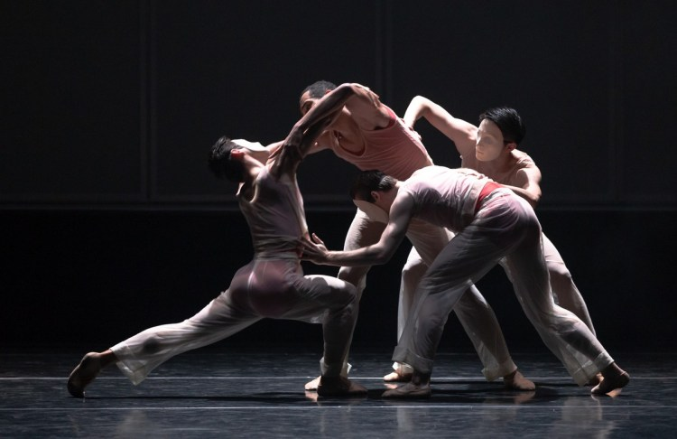 27 Embrace by George Williamson © Dasa Wharton, Birmingham Royal Ballet 2018