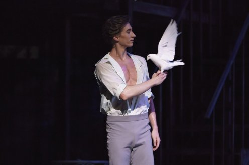The Two Pigeons. Vadim Muntagirov. (C) ROH, 2018. Photographed by Bill Cooper.
