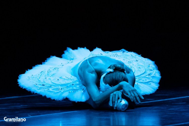 Iana Salenko as The Dying Swan © Graham Spicer 02