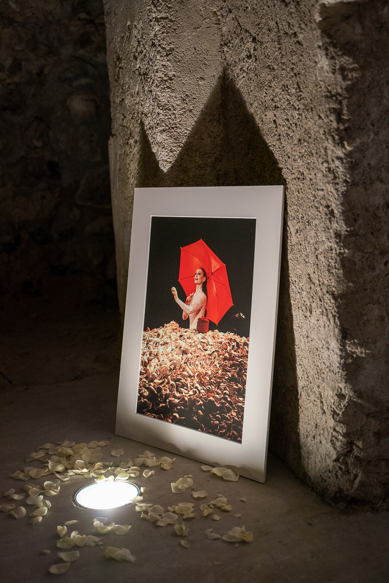 Photos of Carla Fracci by Luciano Romano-01