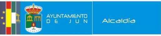 logo ayun2