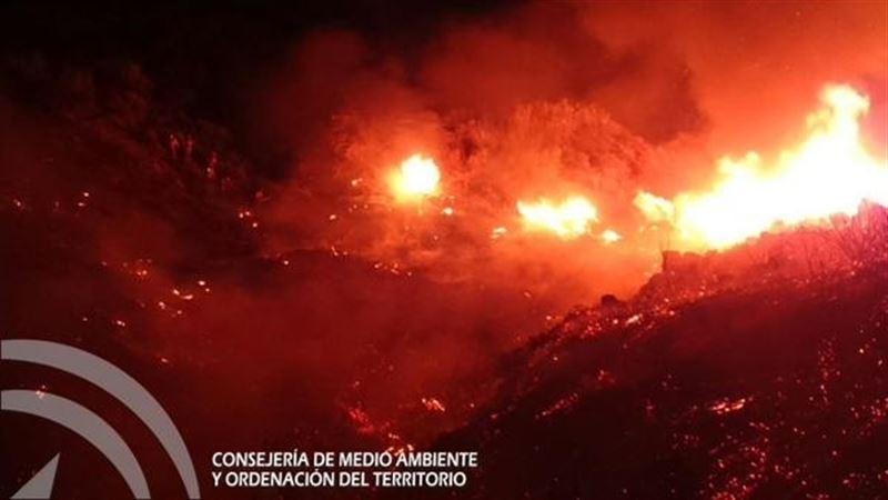incendio forestal notaez