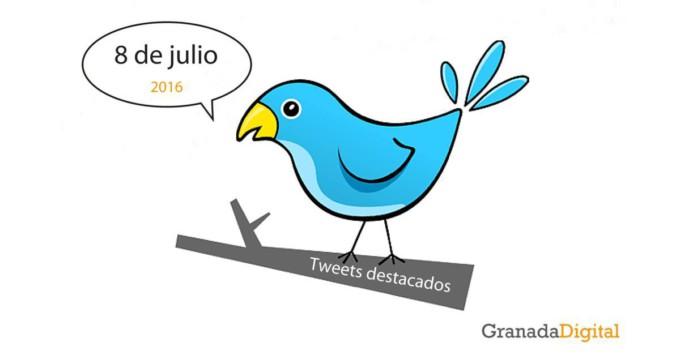 twitter-8julio