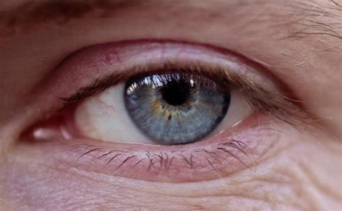 ojo-retina