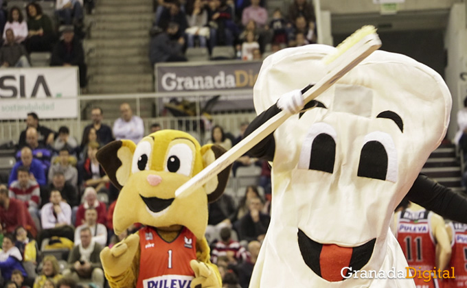 coviran granada - basket - baloncesto 10