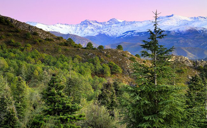 parque natural sierra de huetor
