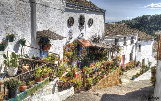 calle Amargura