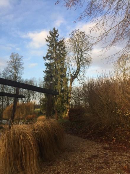 Dans le parc de Grand Bouy, vue d'un coin de la terrasse avec pot de graminées
