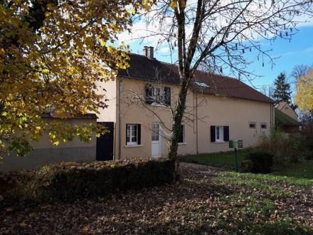 La maison de Célestin à l'automne : le feuillage doré d'un érable sur détache sur la maison et le ciel bleu