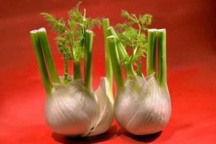 Rémy - Fruits et légumes