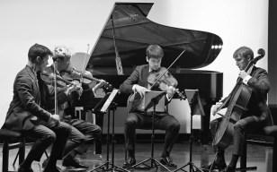 359 Remy - Haydn samedi - 14
