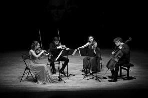 Rémy - Haydn vendredi 17 sept - 29