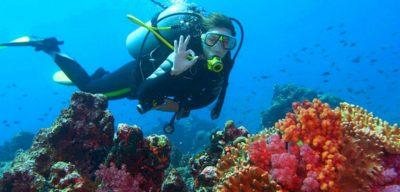 Bali Diving | Bali Tour | Bali Driver | Bali Tour Operators