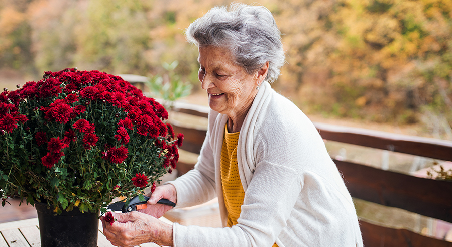 5 Steps for a Safer Fall Season for Seniors