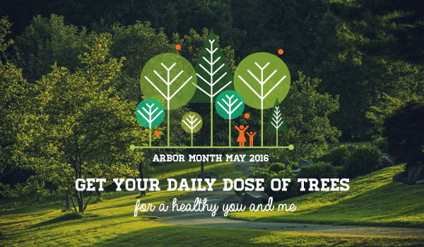Website banner image Arbor Month May 2016 Get Your Daily Dose of Trees