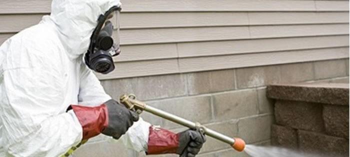 Cómo abrir una compañía de control de plagas