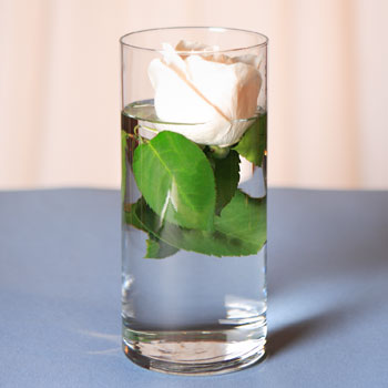 7 inch Glass Cylinder Vase