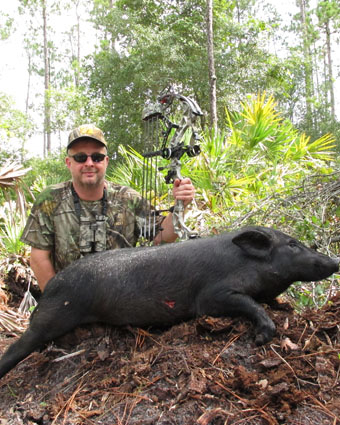 florida hog hunting
