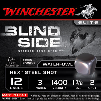 winchester blind side