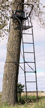 Big Game Ladder Stand