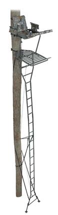 ameristep ladder stand