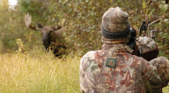 yukon moose hunt