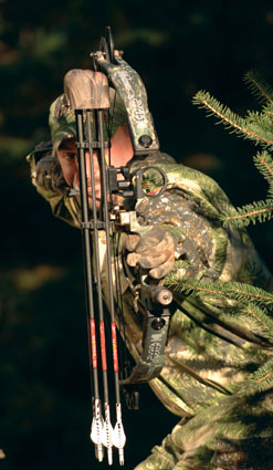 choosing bow sight