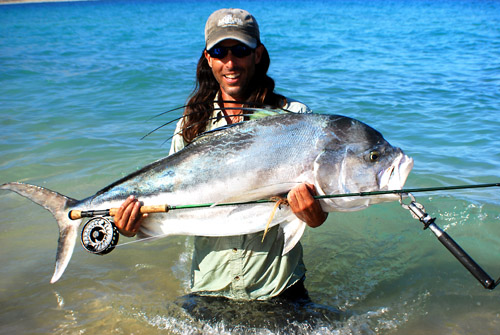 roosterfish world record