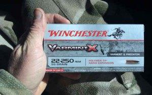 Winchester Varmint