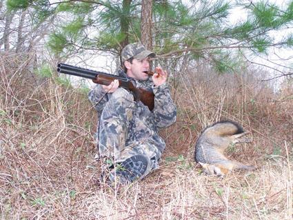 clearcut predator hunting