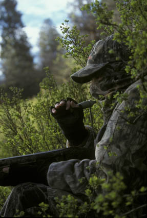 spring predator hunting