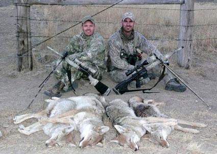 predator hunting partner