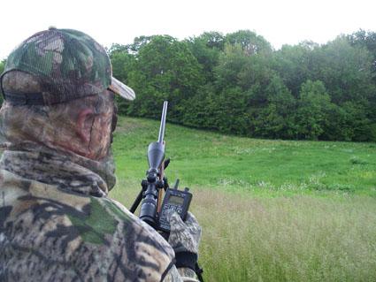 fall coyote hunting