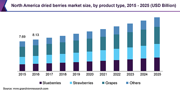 North America dried berries market