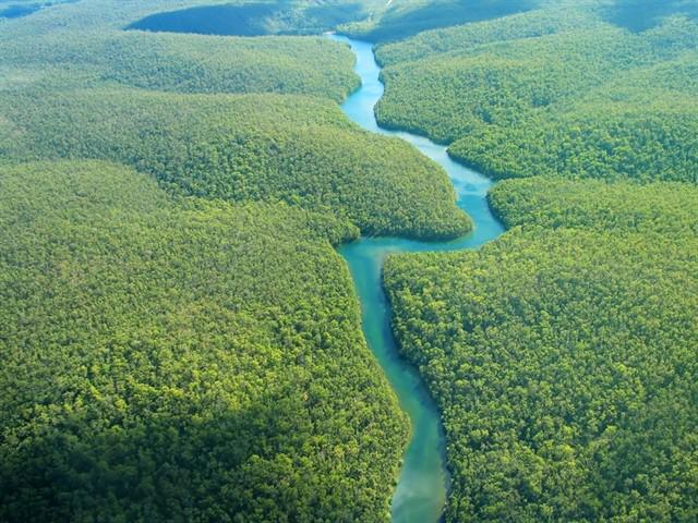 La Amazonia es el hogar de 34 millones de personas, incluidas 385 comunidades indígenas.