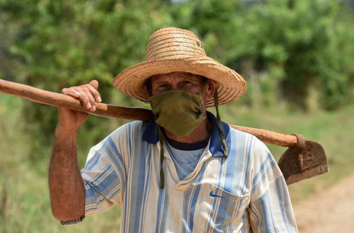 Campesino tomando medidas de precaución por el Coronavirus (Covid-19); en Zaragoza, Mayabeque