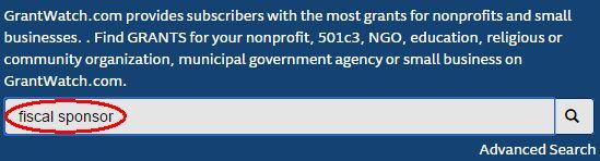 fiscal sponsor
