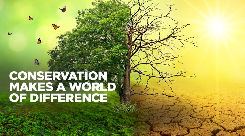 Ten Grants for World Conservation Day