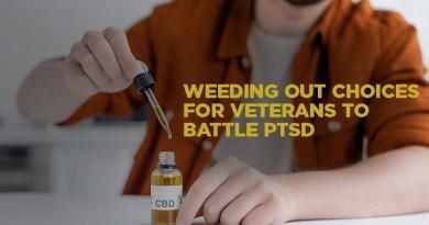 Nonprofit Gets Grant to Study Marijuana's Use for Treating PTSD