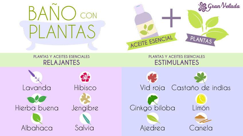 Baños con plantas aromaticas